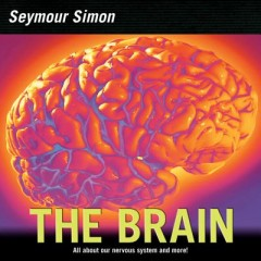 Brain : Our Nervous System