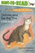 Dolores and the Big Fire : A True Story